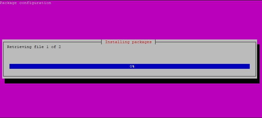 Step 1: Pi-hole Installation Script