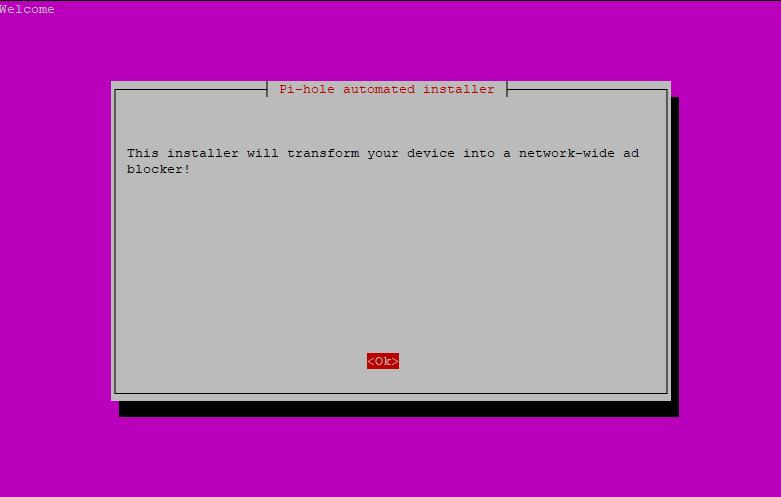 Step 2: Pi-hole Installation Script