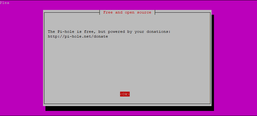 Step 3: Pi-hole Installation Script