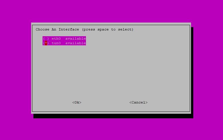 Step 5: Pi-hole Installation Script