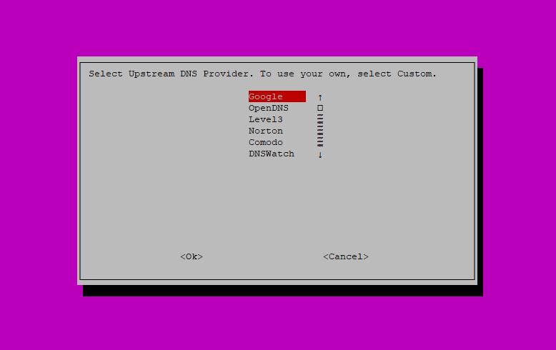 Step 6: Pi-hole Installation Script