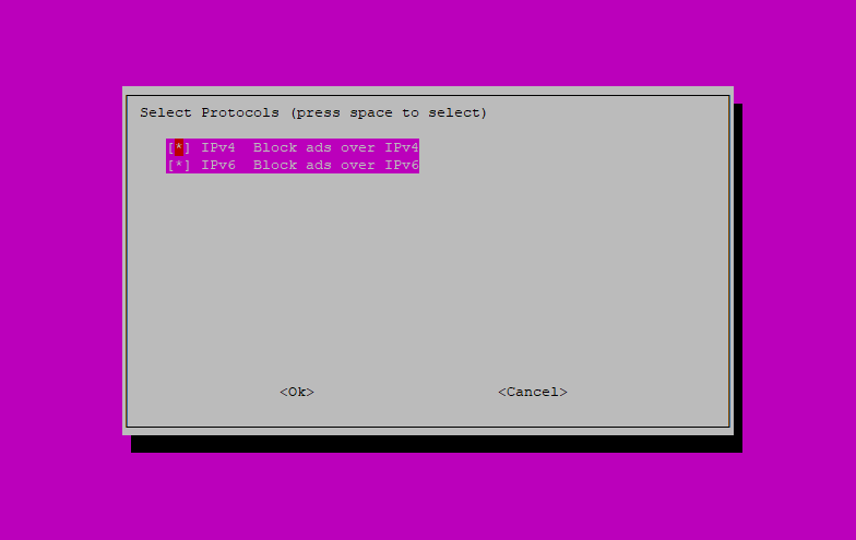 Step 7: Pi-hole Installation Script