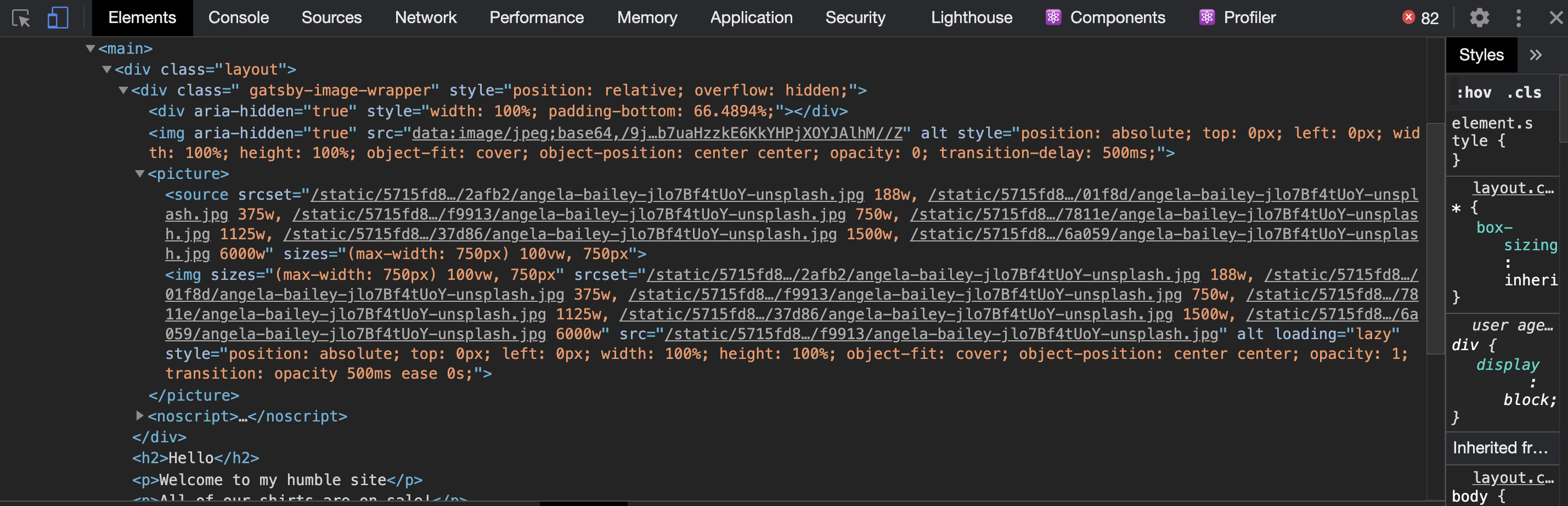 Rendered HTML of the Gatsby site