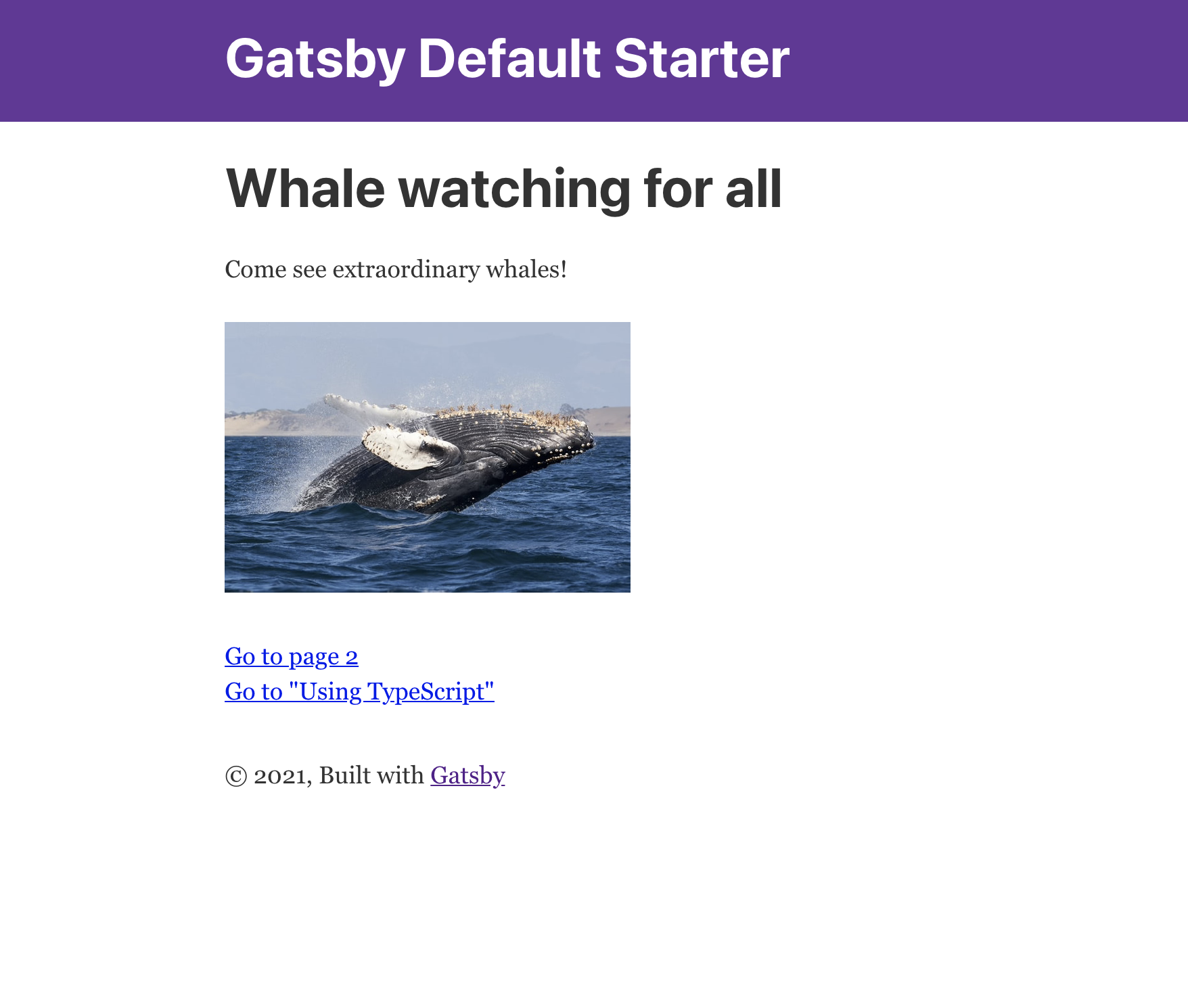 Gatsby site with whale image and text.