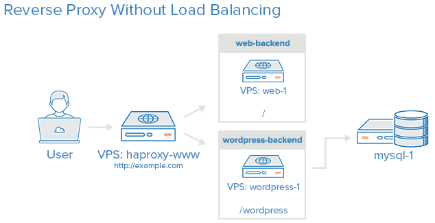 Reverse Proxy With No Load Balancing