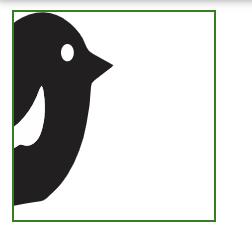 Half of the bird