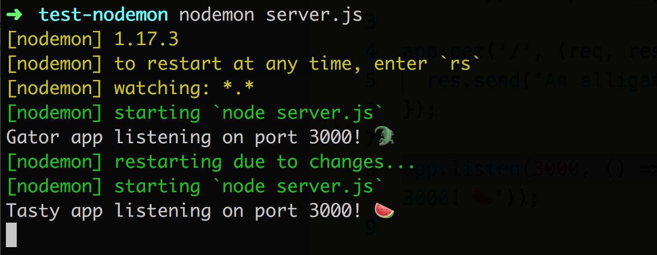 Example nodemon output