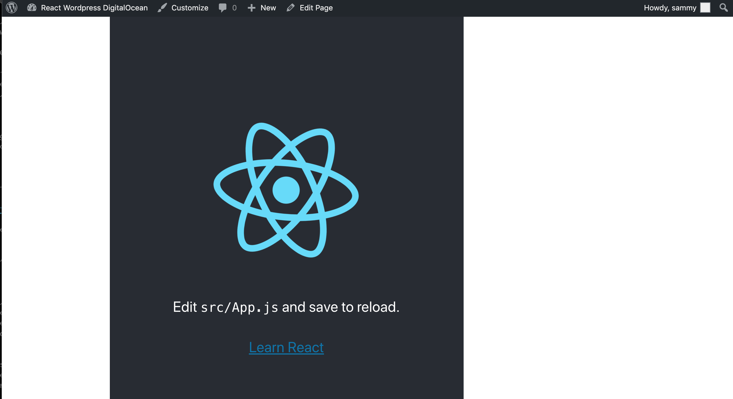 Working React App