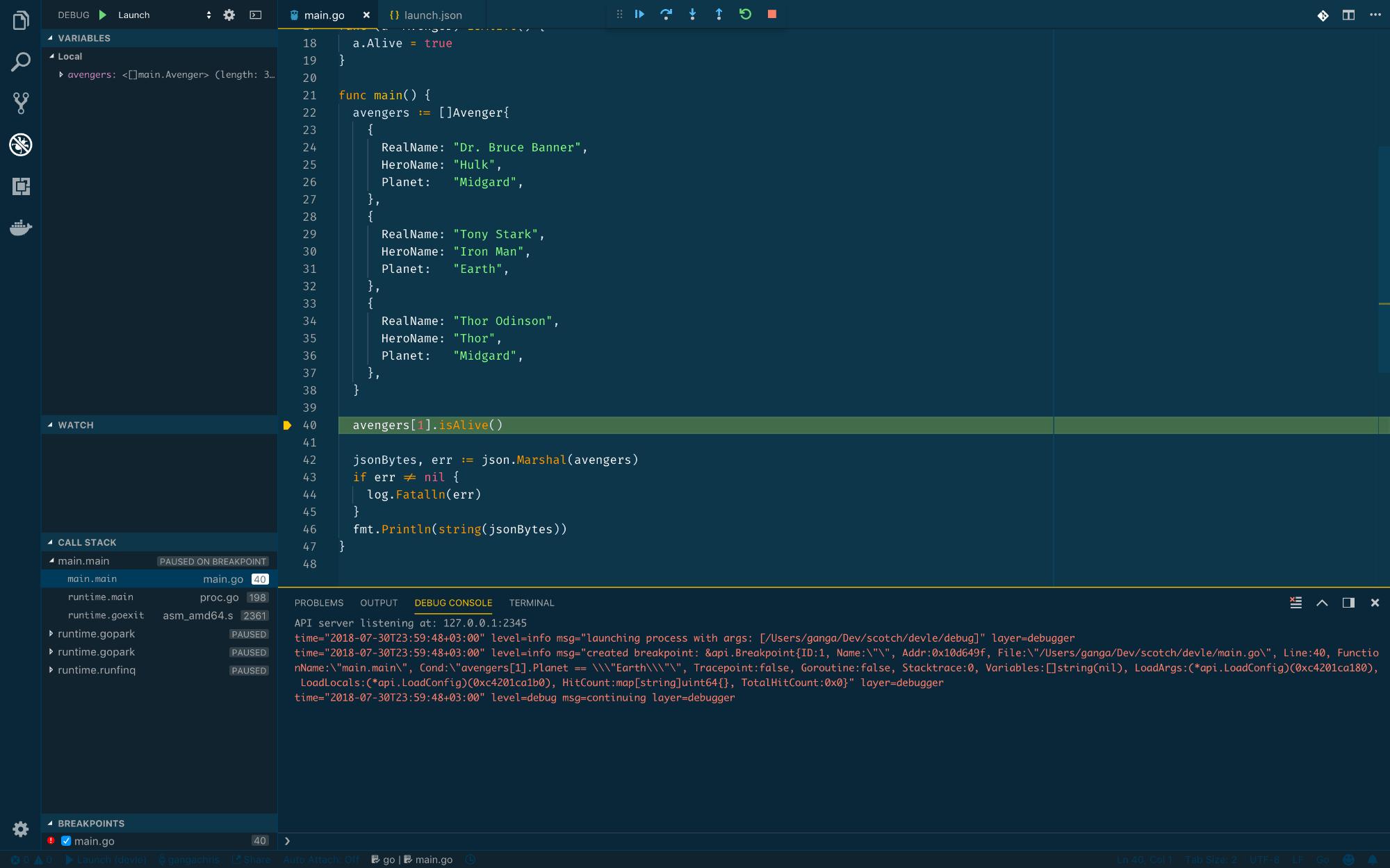 Debug View, no JSON displayed