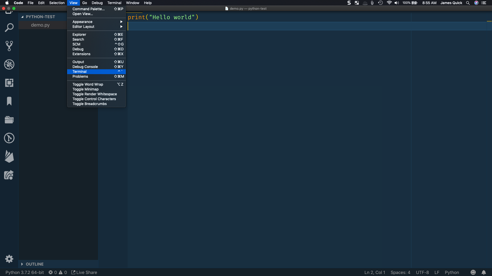 View menu open with Terminal selected