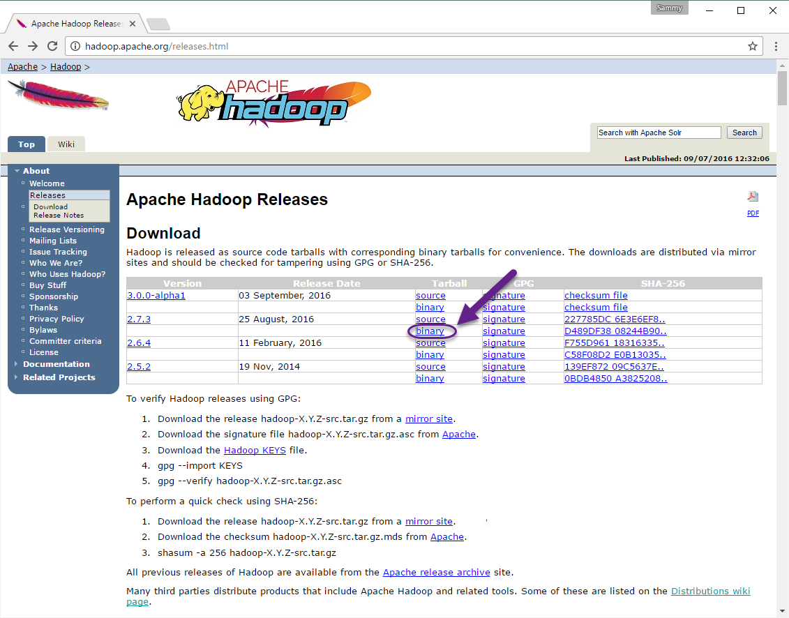 Screenshot of the Hadoop Releases page highlighting the link the mirrors page