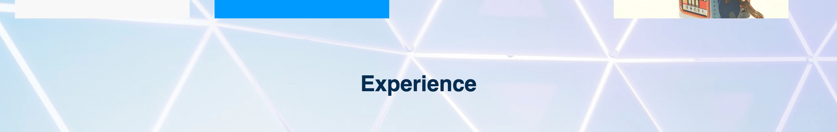"Screenshot of ""Experience"" heading on demonstration website"