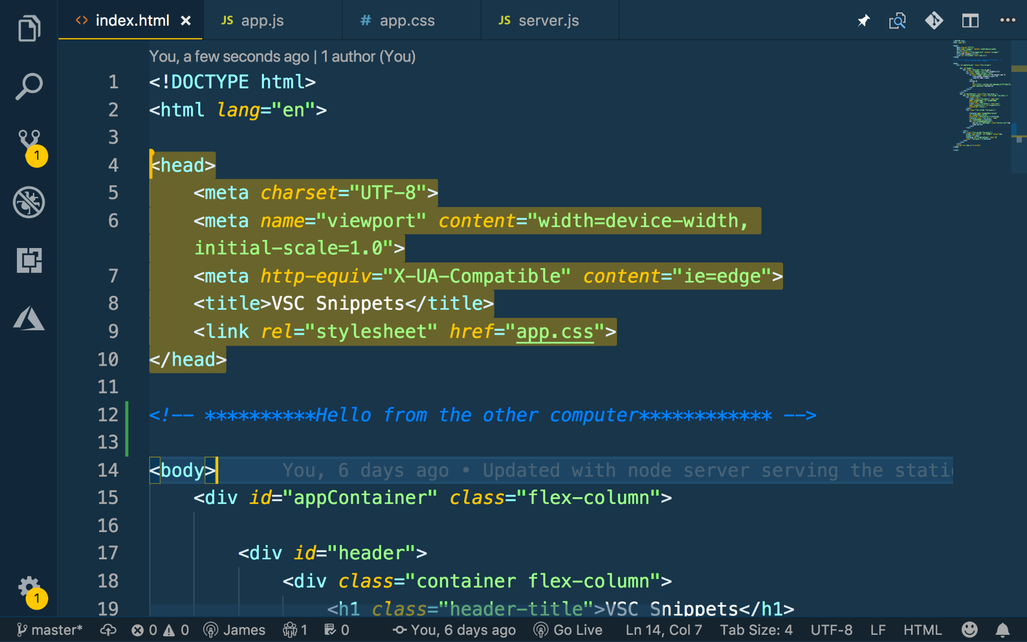 An example of highlighted lines of code visible to the other user