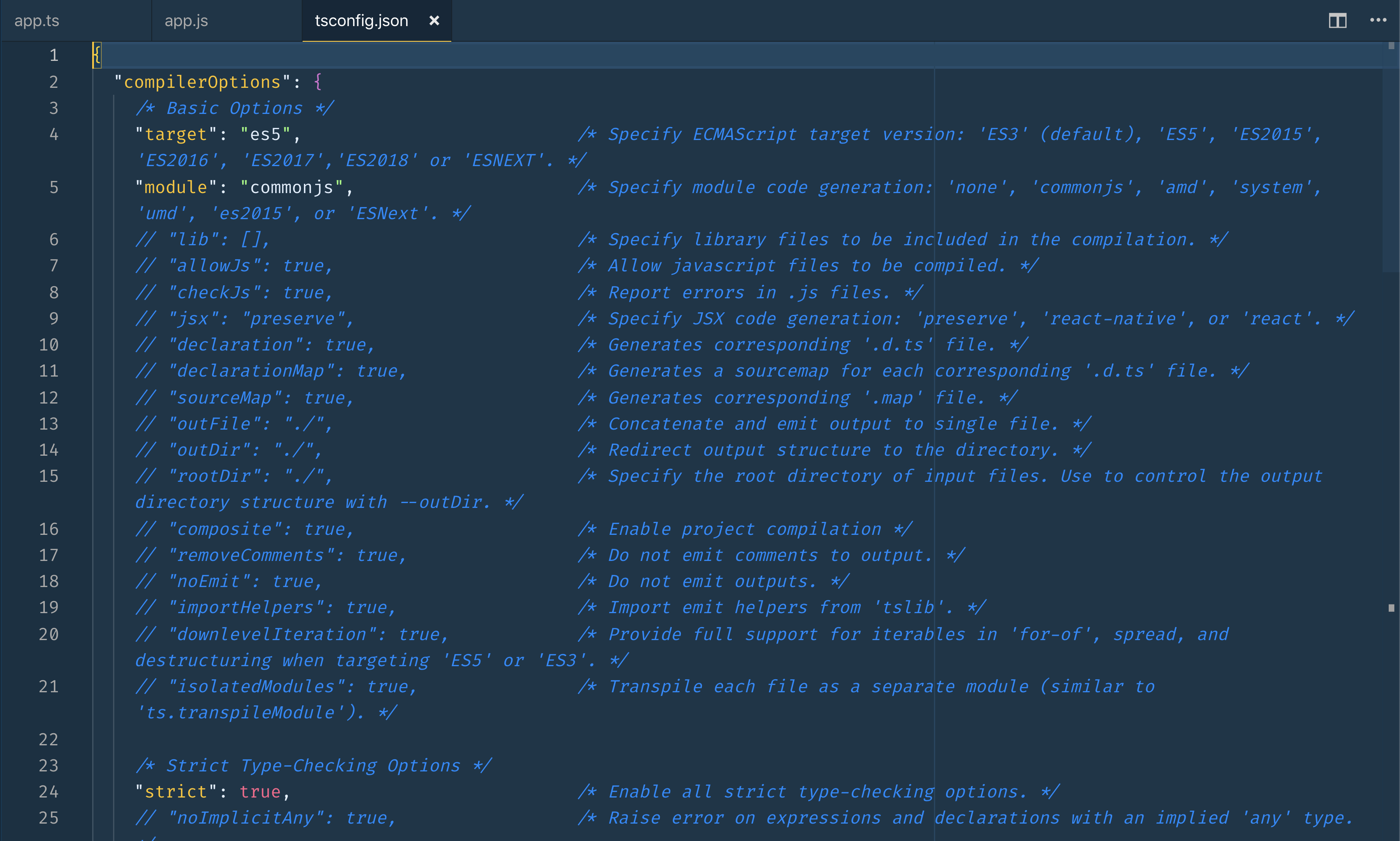 Screenshot of options listed and commented out in the new config file