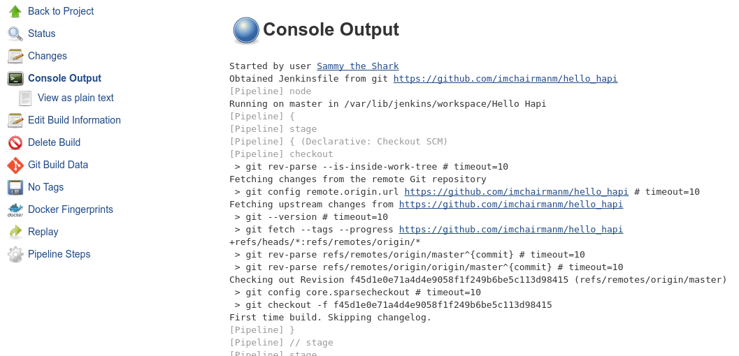 Jenkins console output