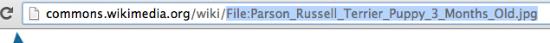 MediaWiki File URL