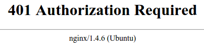 Nginx unauthorized error