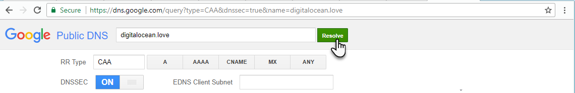 Screenshot of Google Public DNS with values filled in