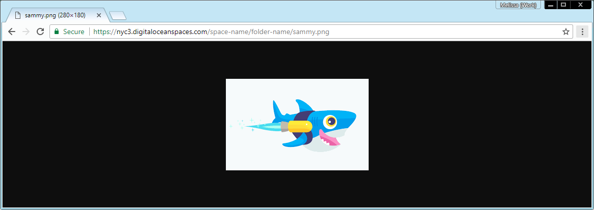 Screenshot of sammy.png loading successfully in a web browser