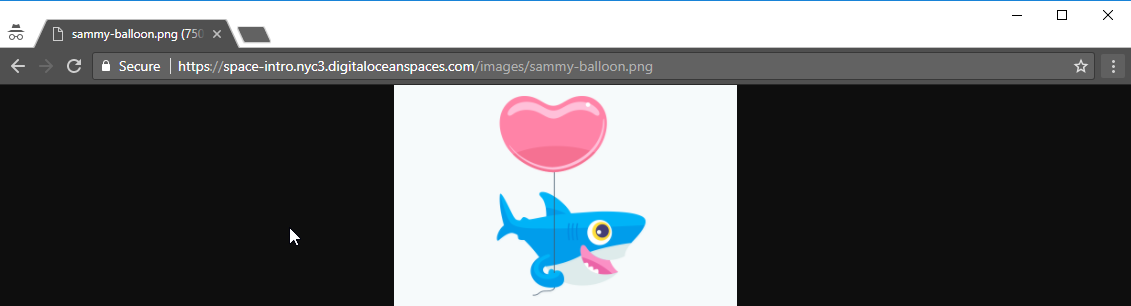 The image of Sammy loaded in the web browser