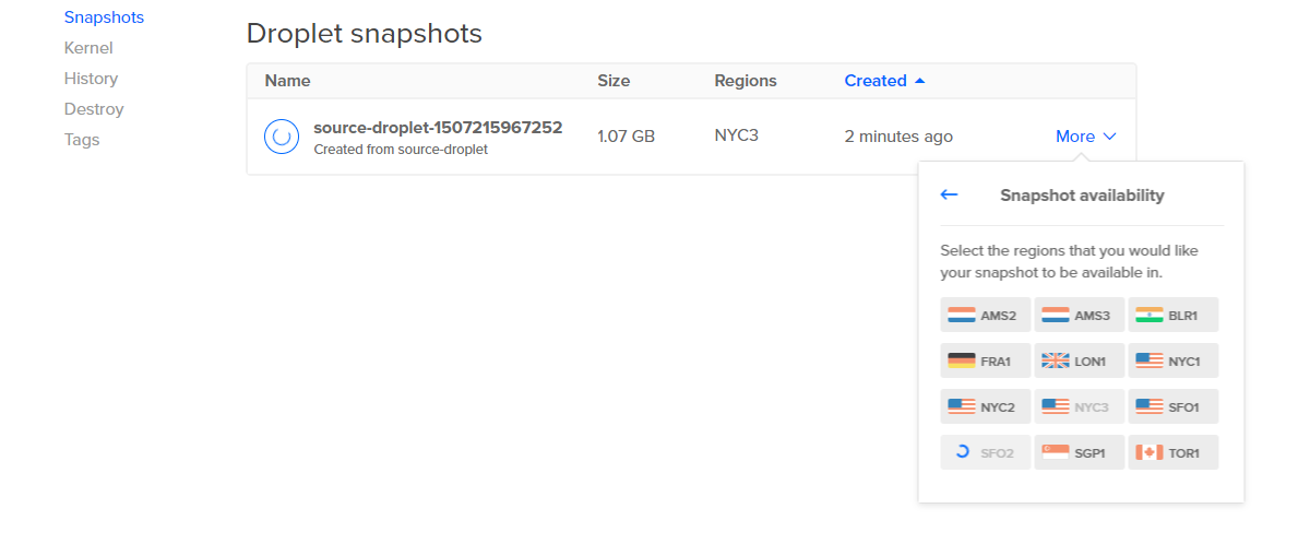 Screenshot of the Snapshot availability choices from the More menu
