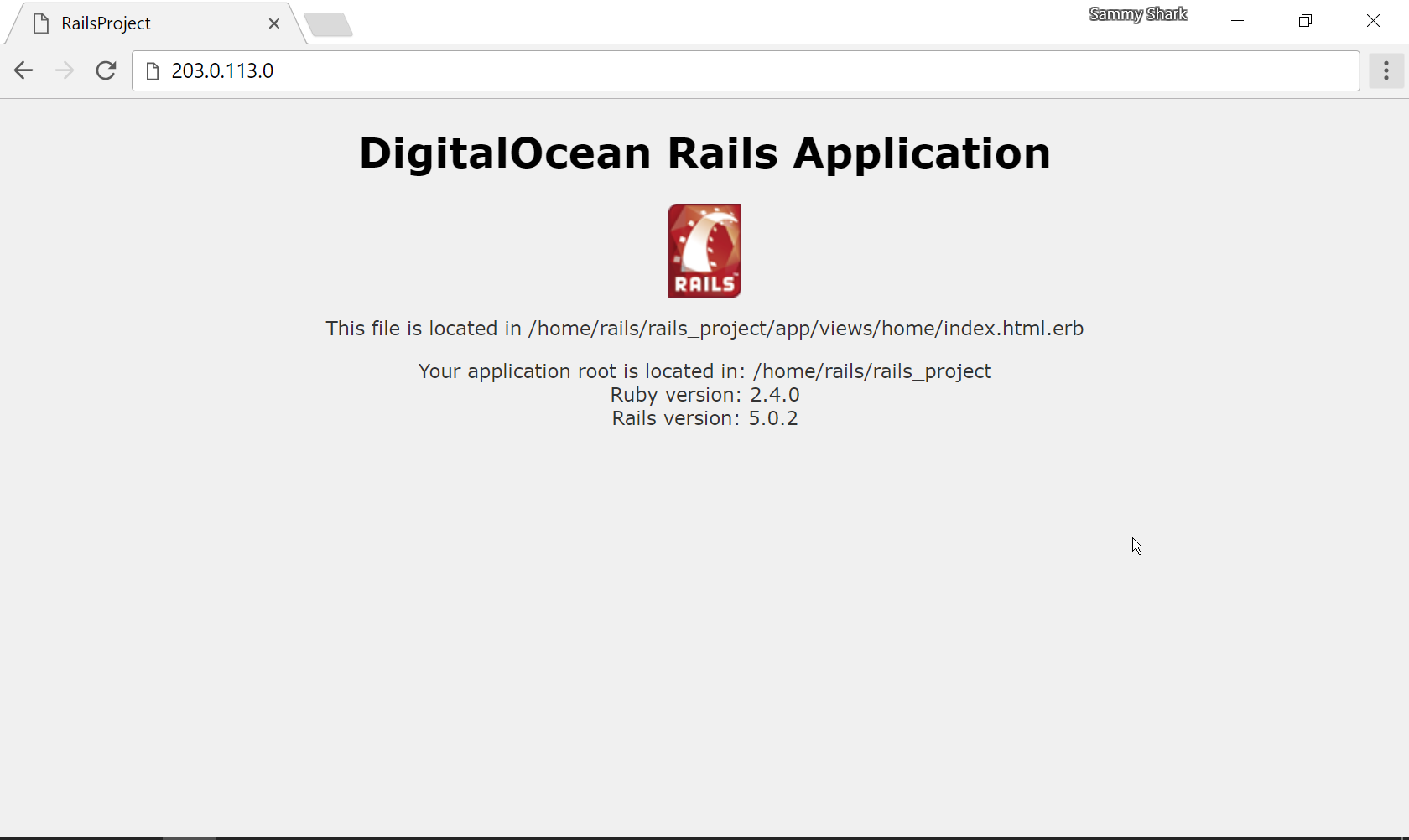 Screenshot showing the DigitalOcean Rails Application heading and version in a web browser