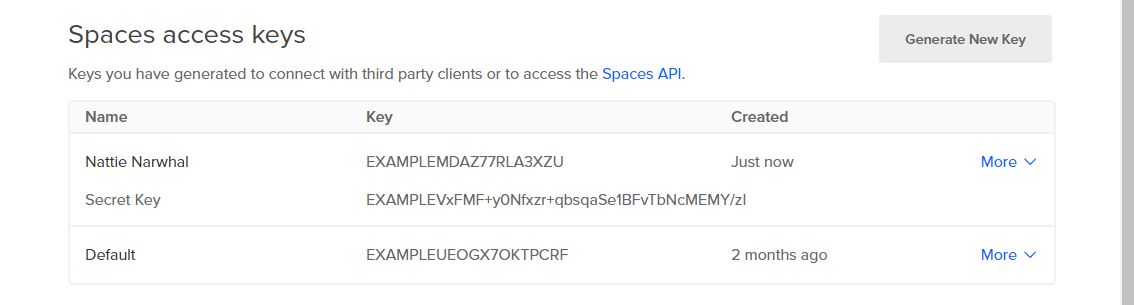 Screenshot of new key pair