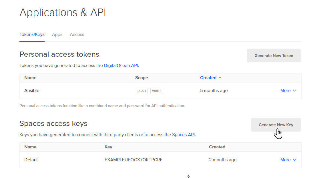 Screenshot of the API Page