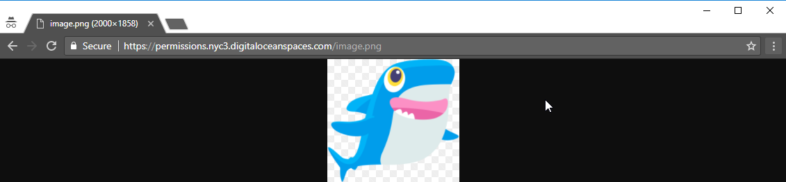 Screenshot of the shark pic loaded in a browser