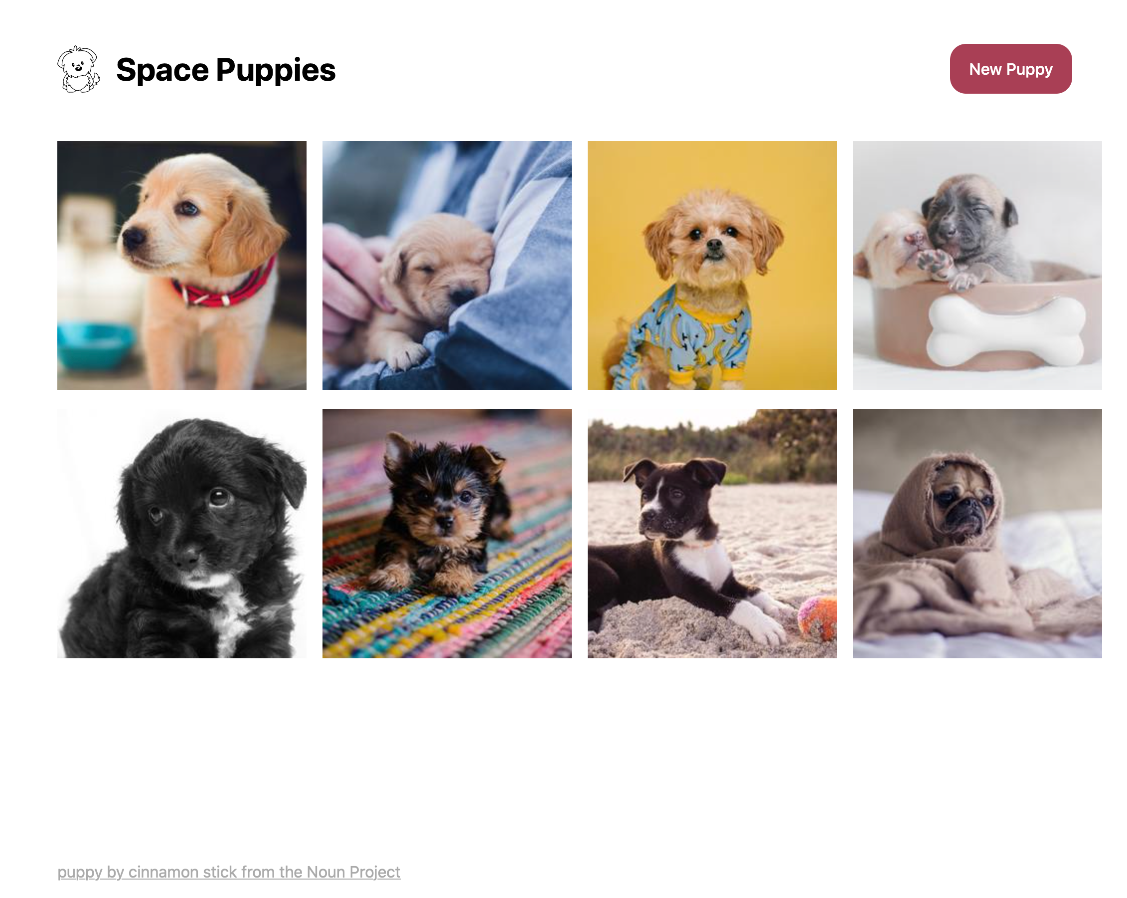 The Space Puppies application running in a web browser