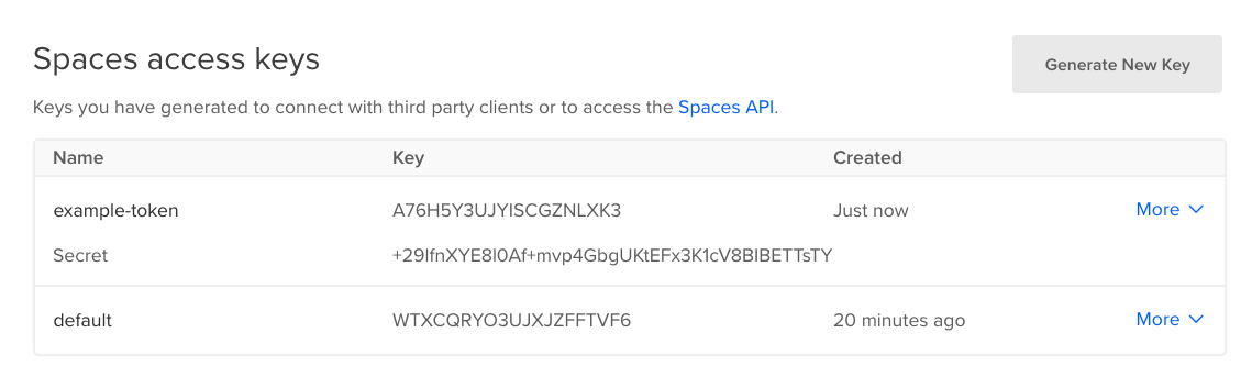 Spaces access key interface w/ a new example key showing both key and secret