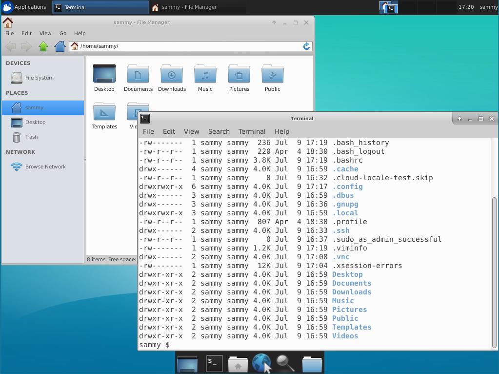 Dateien über die VNC Verbindung mit Ubuntu 18.04