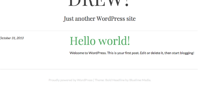 WordPress new theme