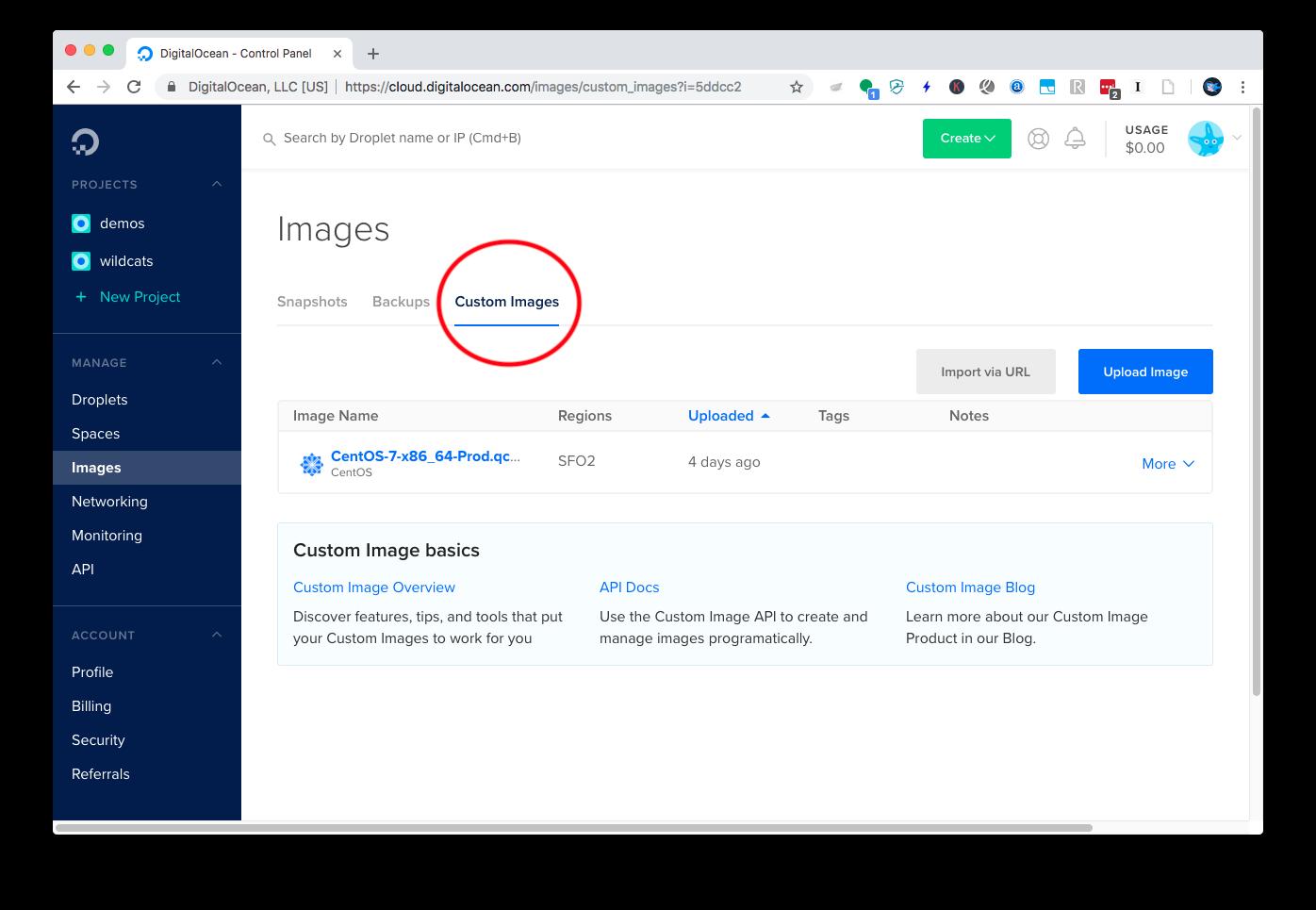 Bring Your Custom Image to DigitalOcean
