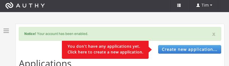 Creating an API application